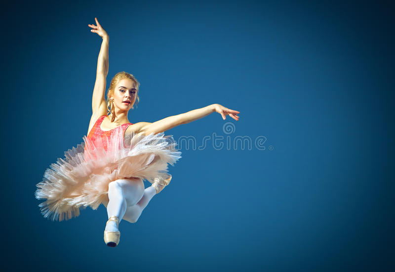 Schöner weiblicher Balletttänzer auf einem grauen Hintergrund Ballerina trägt rosa Ballettröckchen- und pointeschuhe stockbild