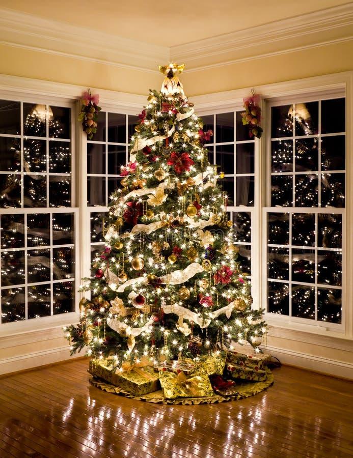 Schöner Weihnachtsbaum nachts lizenzfreie stockfotografie