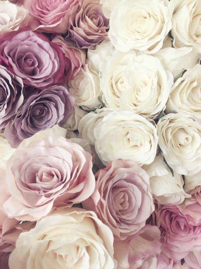 Schöner Weinlese Rosen-Hintergrund weiße, rosa, purpurrote, violette, Sahnefarbblumenstraußblume Elegante Art mit Blumen lizenzfreies stockfoto