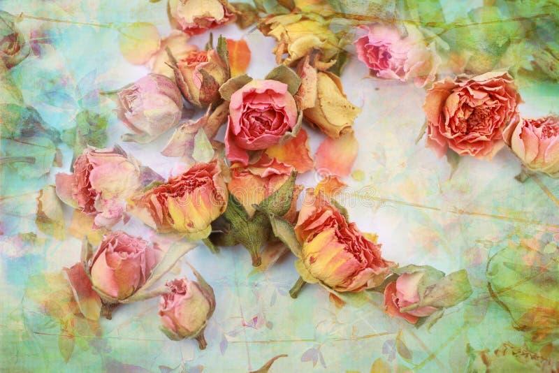 Schöner Weinlesehintergrund der trockenen Rosen lizenzfreies stockfoto