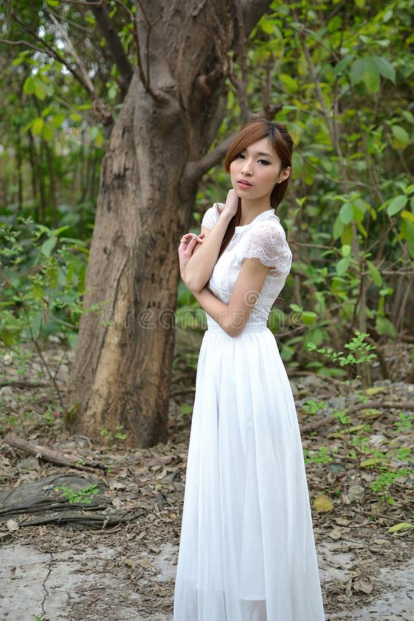Schönes asiatisches Mädchen, das unter einem Baum stillsteht stockfotos