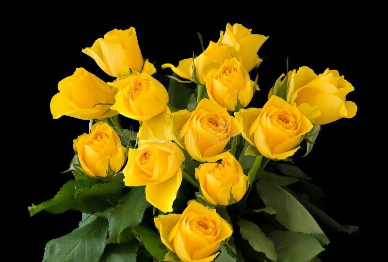 Schönes Bündel-gelbe Rosen lokalisiert auf einem schwarzen Hintergrund lizenzfreie stockfotos