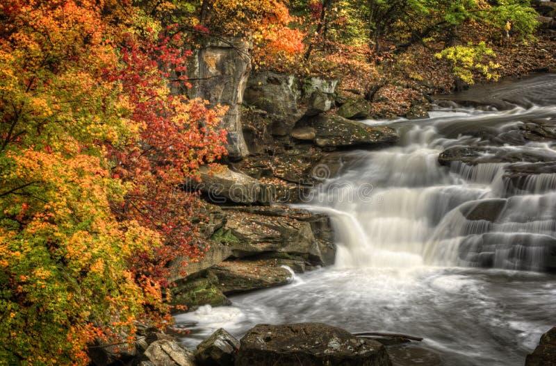 Schönes Berea fällt in Herbst stockbilder