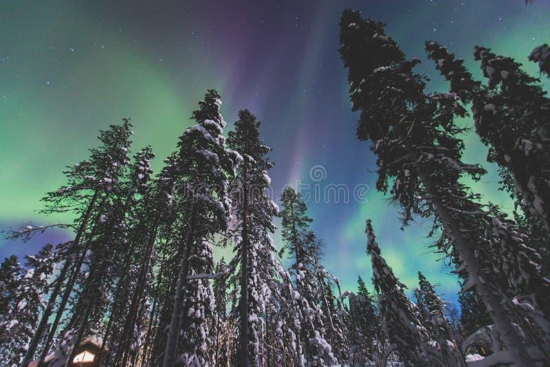 Schönes Bild von enormer mehrfarbiger grüner vibrierender Aurora Borealis, Nordlichter lizenzfreie stockbilder