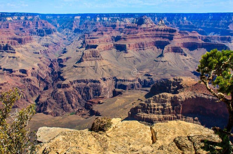 Schönes Bild von Grand Canyon stockfotos