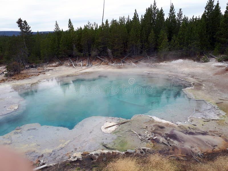 Schönes blaues Geysir ` mystisches Frühling ` in Norris Geyser Basin im Park Yellowstone stockfoto