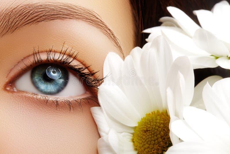 Schönes blaues weibliches Auge mit weißer Frühlingsblume Säubern Sie Haut, Mode naturel Make-up Gute Vision, Gesundheitswesen lizenzfreies stockfoto