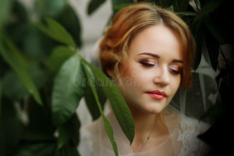 Schönes blondes Brautporträt, Nahaufnahme des herrlichen Jungvermähltens wo stockfotos