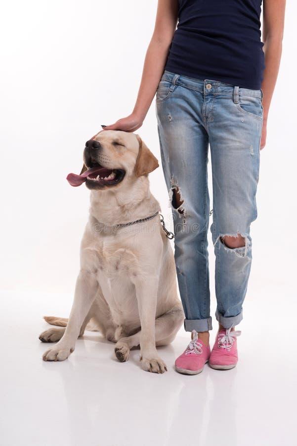 Schönes blondes Mädchen mit Labrador retriever stockbild
