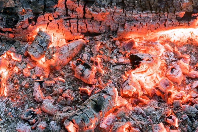 Schönes Feuer mit hellen glühenden Kohlen lizenzfreies stockfoto