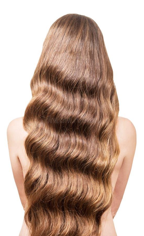 Schönes, flüssiges langes gewelltes Haar auf hinterem jungem Mädchen Lokalisierter weißer Hintergrund stockbilder