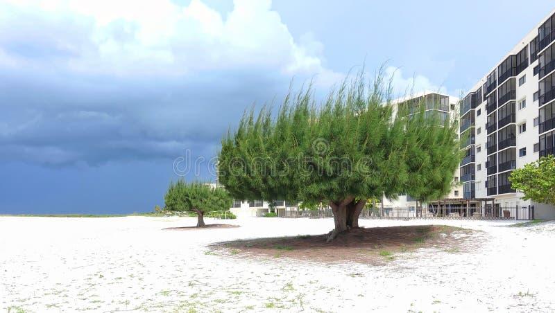 Schönes Fort Myers Beach stockfotografie