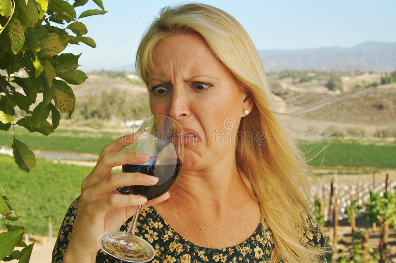 Schönes Frauen-Wein-Probieren lizenzfreies stockfoto