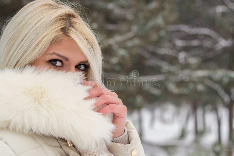Schönes Frauenportrait lizenzfreie stockbilder