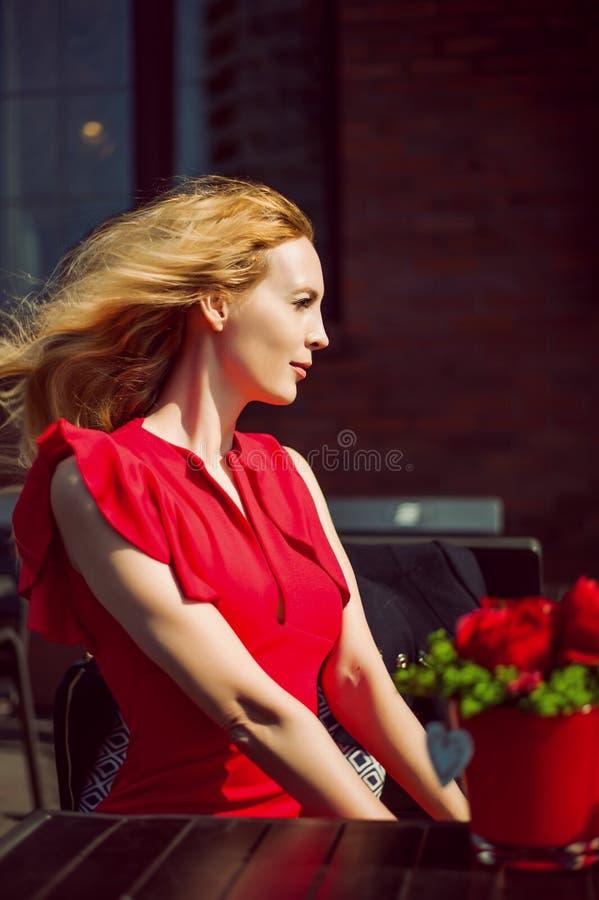 Schönes Frauenprofil Sie im roten Kleid stockfotografie
