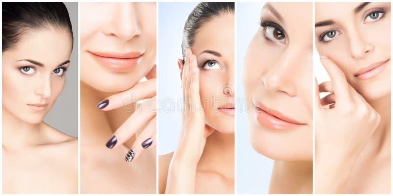 Schönes Gesicht des jungen und gesunden Mädchens in der Collagensammlung Plastische Chirurgie, Hautpflege, Kosmetik und Face lift stockfotos