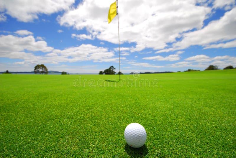 Schönes Golf-Grün stockfotografie