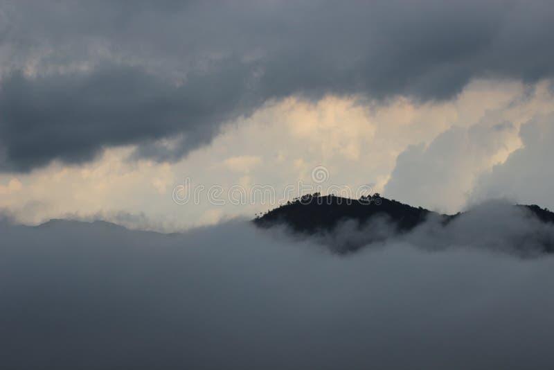 Schönes Indian Hills, Munnar, Kerala, Indien stockbilder