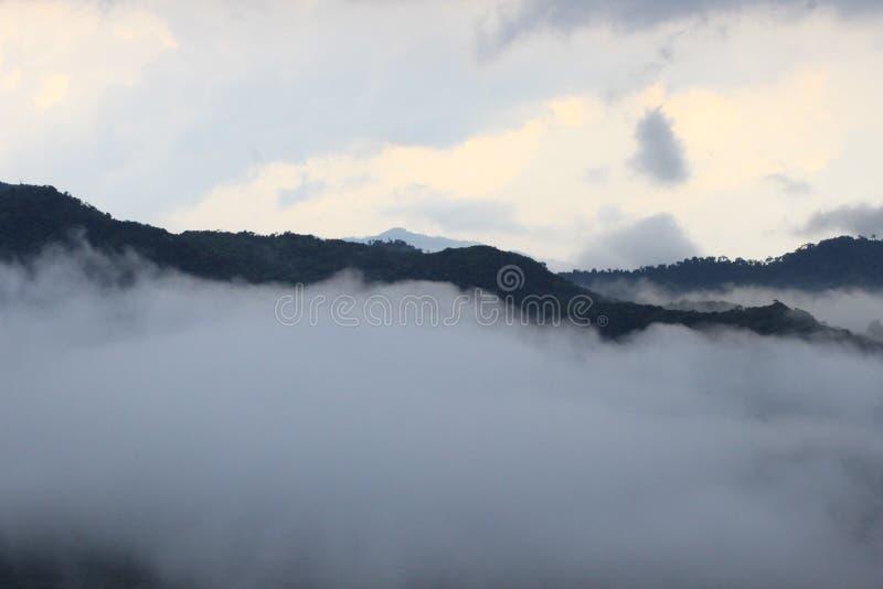 Schönes Indian Hills, Munnar, Kerala, Indien lizenzfreies stockfoto