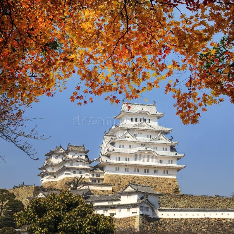 Schönes Japaner Himeji-Schloss und -Ahornbaum lizenzfreie stockfotos