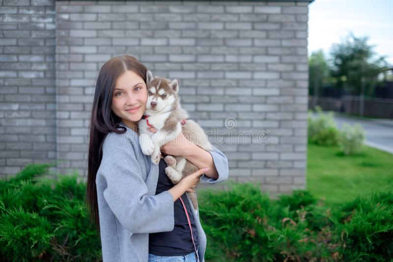 Schönes junges glückliches der hübschen Frau mit dem langen dunklen Haar, das kleinen Hundewelpen auf Straßenstadthintergrund häl lizenzfreies stockfoto