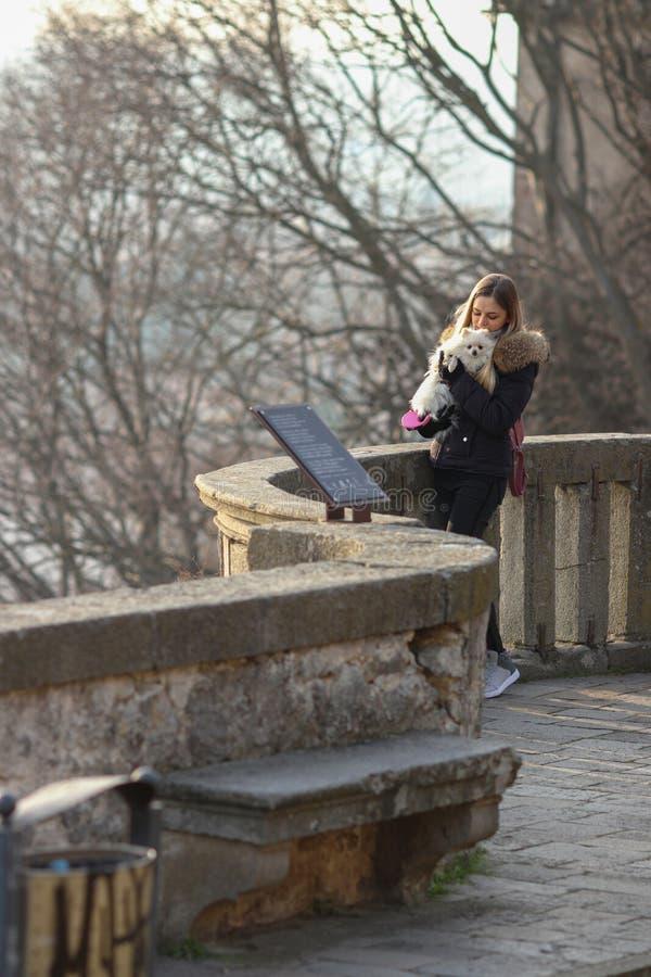Schönes junges lächelndes Mädchen schlendert mit kleinem weißem Hund Deutscher zwergartiger Spitz pomeranian lizenzfreie stockbilder