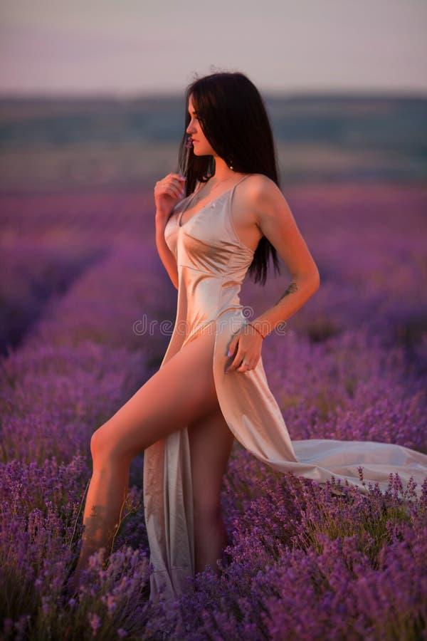 Schönes junges Mädchen geht auf einem Gebiet des Lavendels lizenzfreie stockfotos