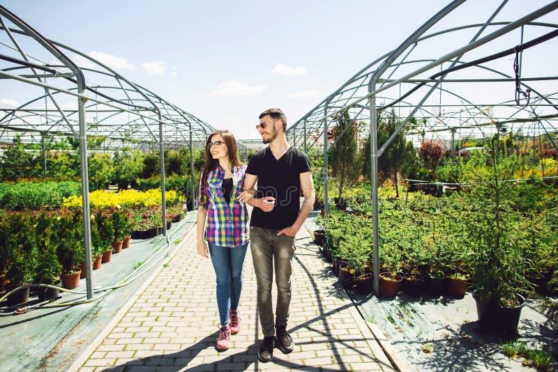 Schönes junges Paar in der zufälligen Kleidung wählt Anlagen und lächelt während Stellung im Gewächshaus stockfotos