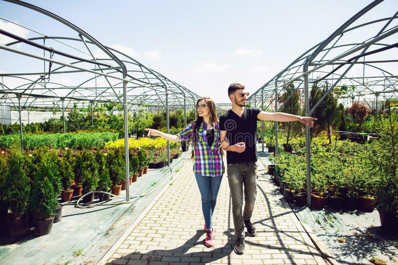 Schönes junges Paar in der zufälligen Kleidung wählt Anlagen und lächelt während Stellung im Gewächshaus stockbilder