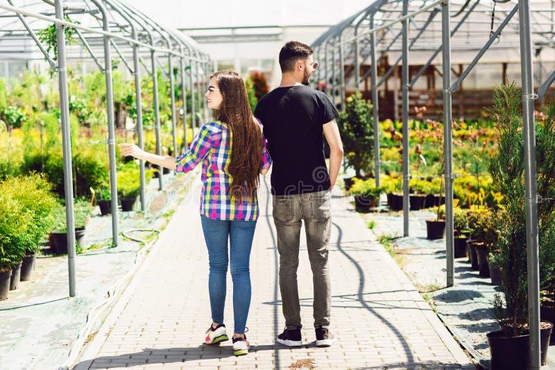 Schönes junges Paar in der zufälligen Kleidung wählt Anlagen und lächelt während Stellung im Gewächshaus Hintere Ansicht stockfotografie