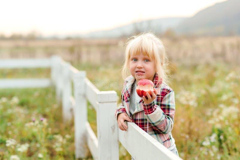 Schönes kleines Mädchen, das Apfel im Freien isst Cute-Kind auf einem Spaziergang auf einem Bauernhof Mädchen mit tollen Augen un lizenzfreie stockfotos