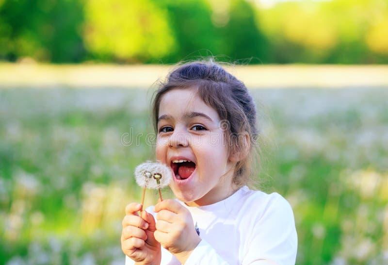 Schönes kleines Mädchen, das mit Löwenzahnblume in sonnigem lacht lizenzfreies stockbild