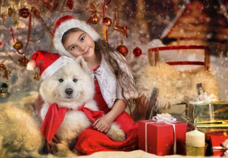 Schönes kleines Mädchen und Hund am Weihnachten stockbild