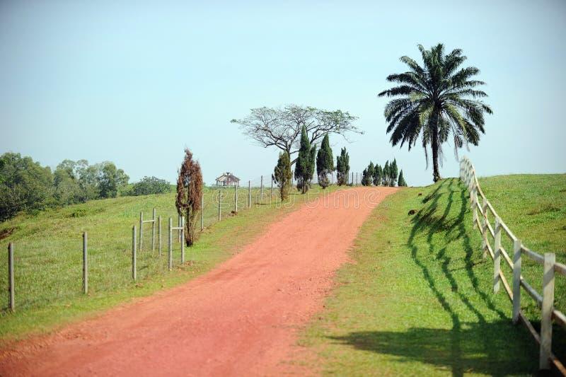 Schönes ländliches Gebiet stockfoto