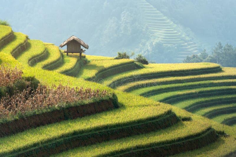 Schönes Landschaftgrün-terassenförmig angelegtes Reis-Feld in MU-cang Chai, Y lizenzfreies stockfoto