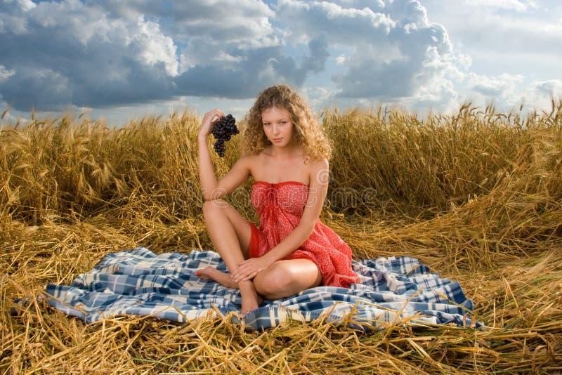 Schönes Mädchen auf Picknick auf dem Weizengebiet stockbilder