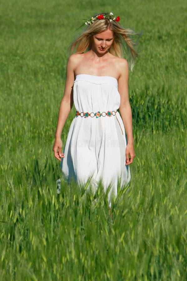 Schönes Mädchen, das auf dem grünen Gebiet geht stockfotos