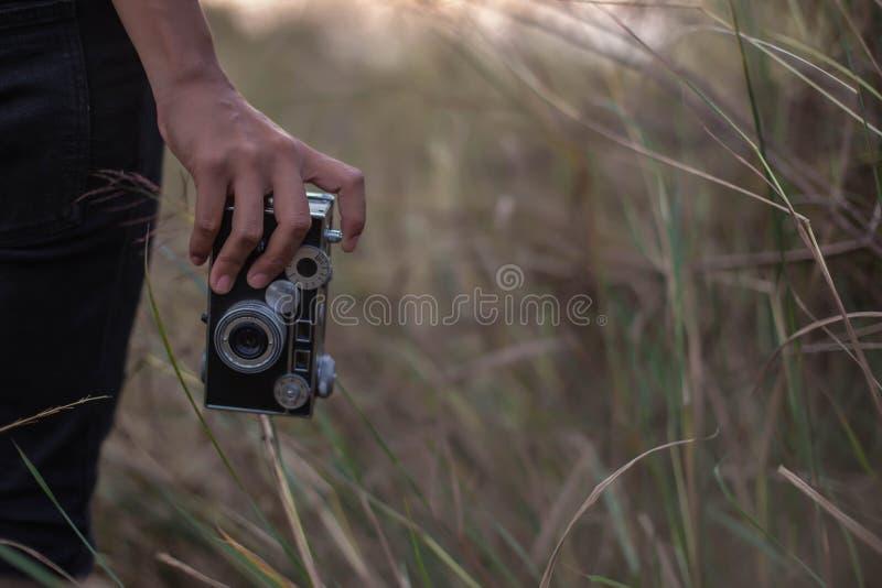 Schönes Mädchen, das Fotos auf hellgrünen Wiesen macht stockfotos