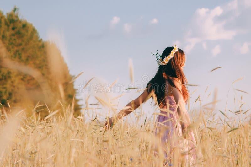 Schönes Mädchen, das Natur auf dem Feld am sonnigen Sommerabend genießt lizenzfreies stockbild