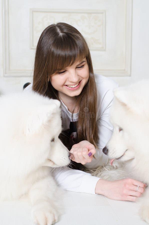 Schönes Mädchen, das Samoyed spielt lizenzfreie stockbilder