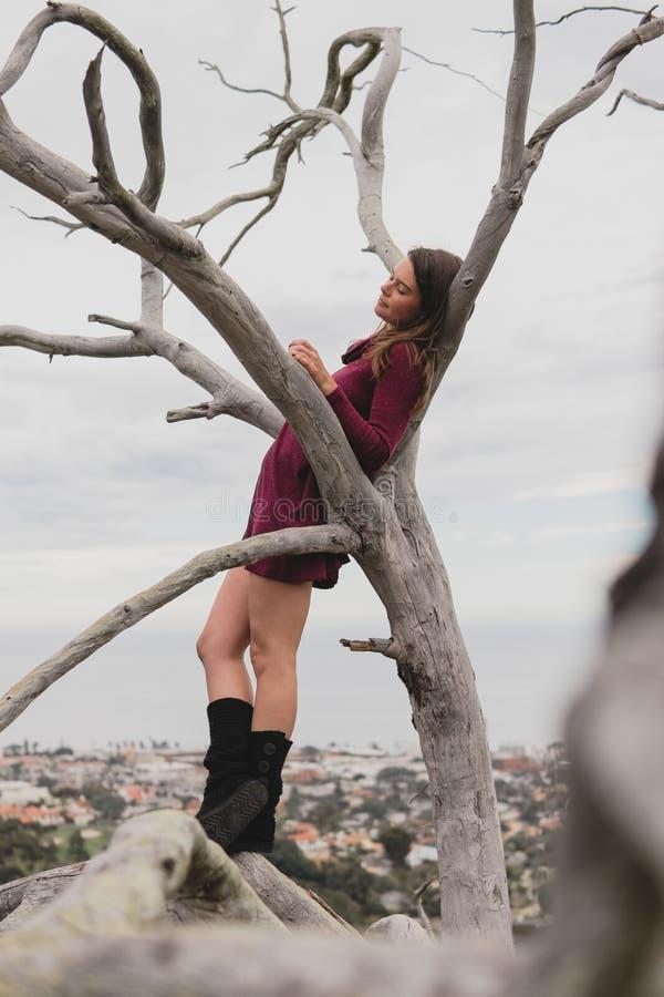 Schönes Mädchen, das sich draußen in einem Baum entspannt stockbilder