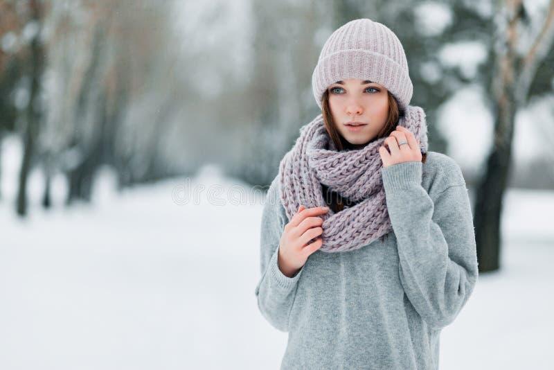 Schönes Mädchen in den Winterständen auf der Straße in einem Hut und in einer Strickjacke im Winter stockfotografie