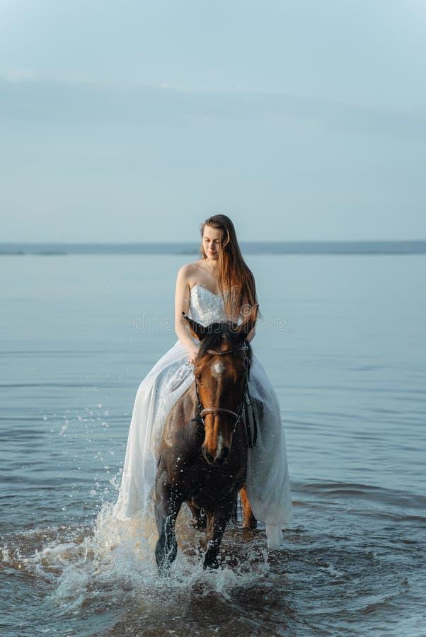 Schönes Mädchen in einem weißen langen Kleid, das ein Pferd reitet Braut im See zu Pferd lizenzfreies stockfoto