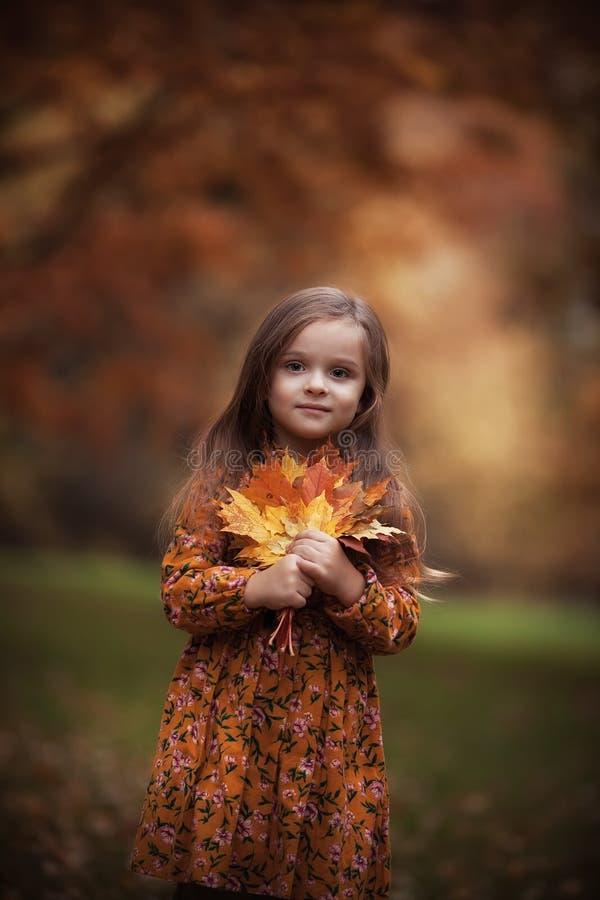 Schönes Mädchen im Herbstpark lizenzfreie stockfotografie