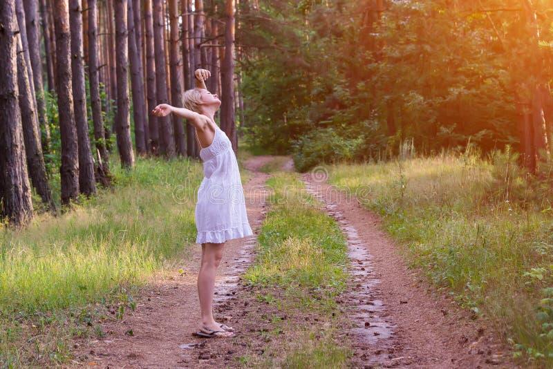 Schönes Mädchen im Wald stockbilder