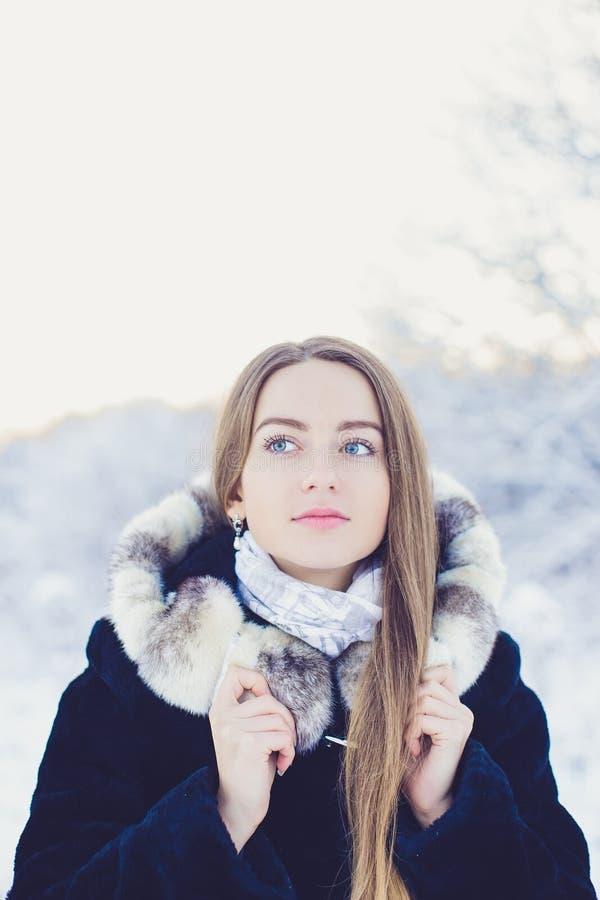 Schönes Mädchen im Winter stockfotografie