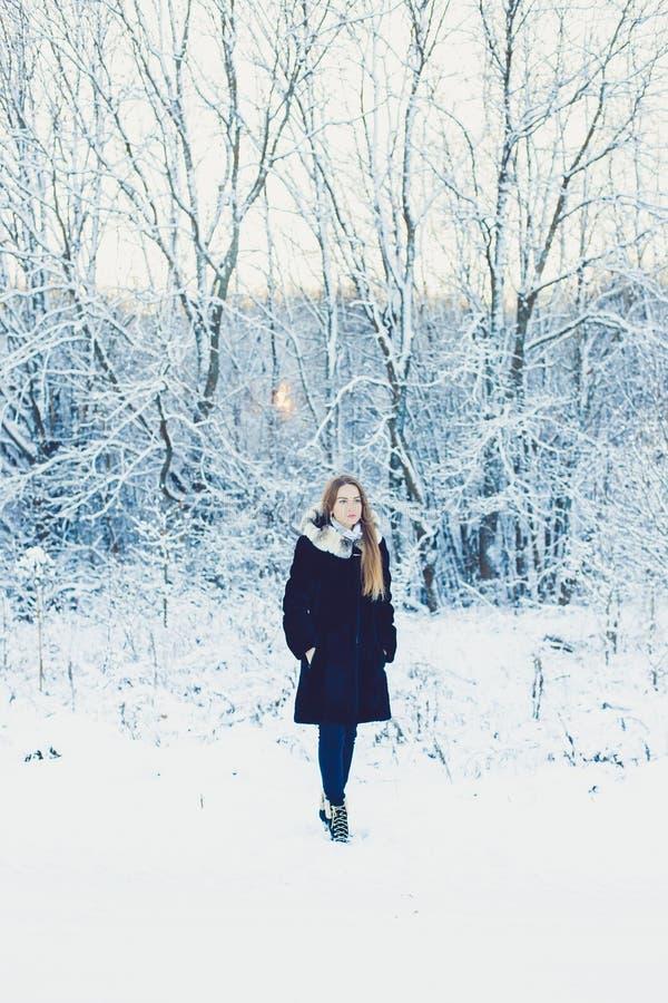 Schönes Mädchen im Winter stockbild