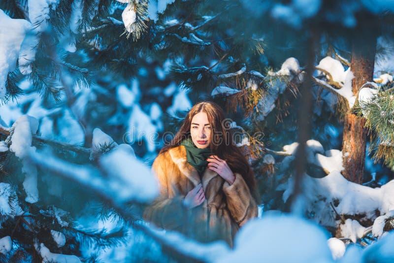 Schönes Mädchen im Winterwald lizenzfreies stockbild