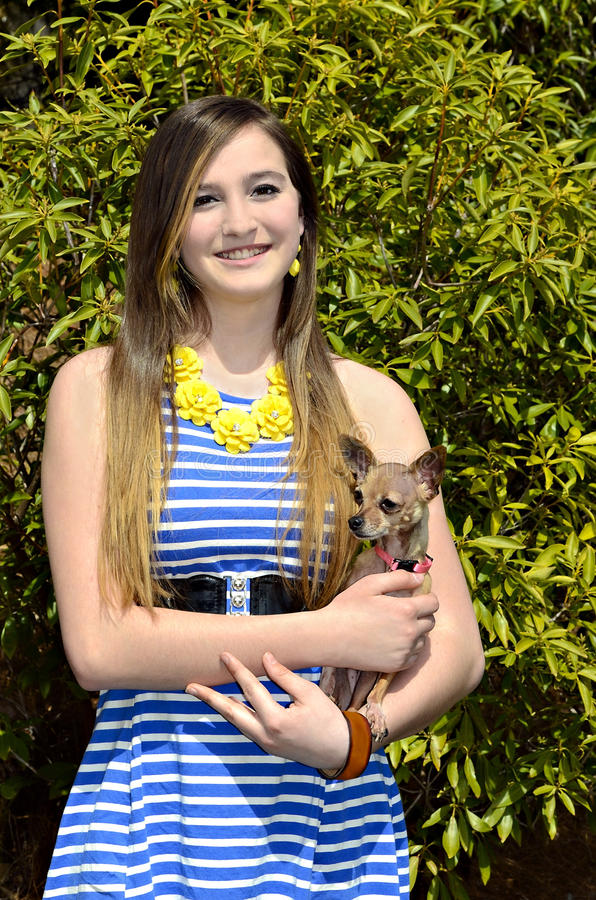Schönes Mädchen mit Chihuahua stockfoto