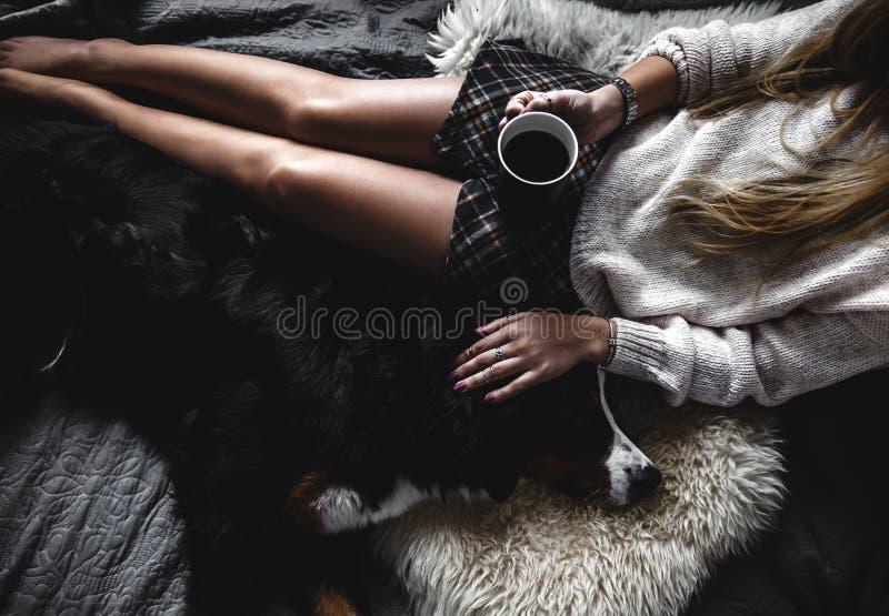 Schönes Mädchenlügen und ihr netter Hundberner sennenhund auf dem Bett, stilvoll, modern, gemütlich stockfoto